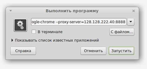 chrome proxy params